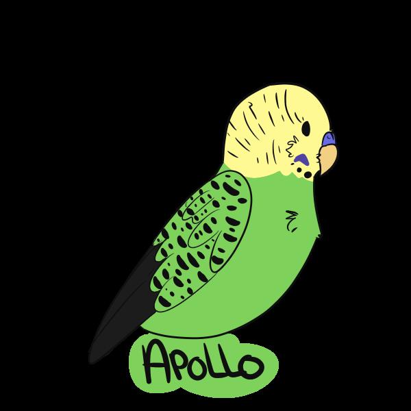 apollo2.png