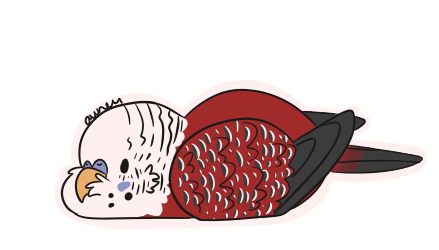 red budgie.png