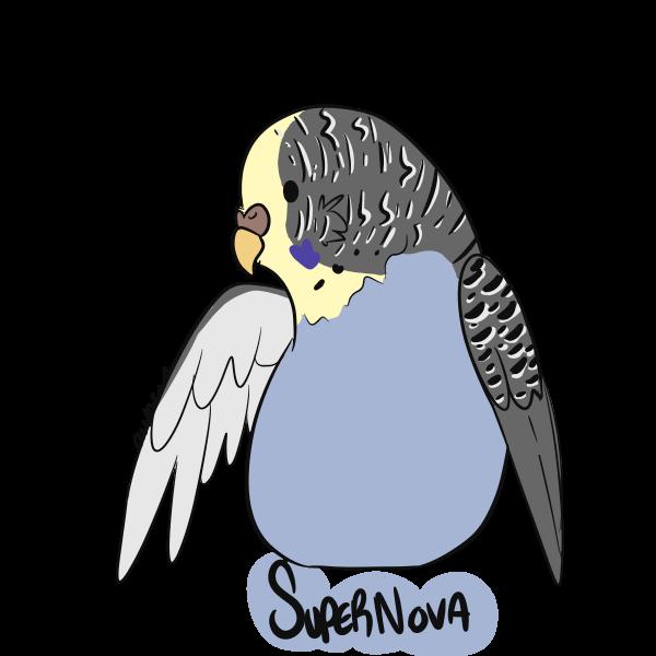 supernova3.png